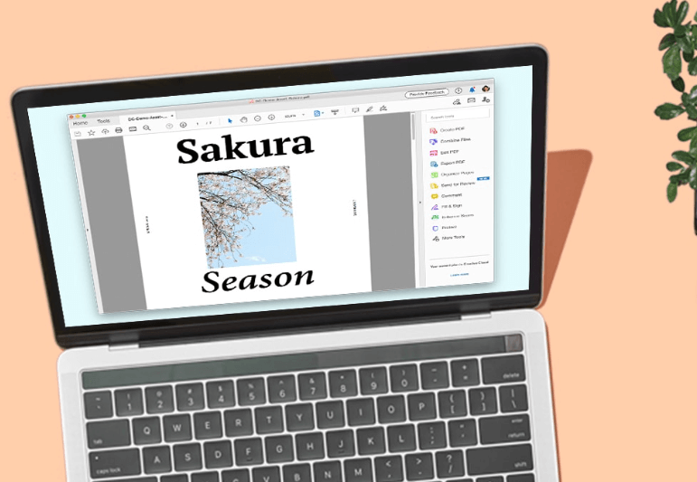 5 of the best PDF converters on Windows and Mac in 2020 - Adobe Acrobat