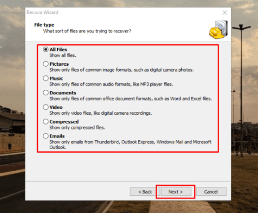 How to recover deleted or corrupted files (Windows and Android) - Recuva - Select the file type